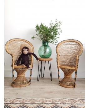 Paire de fauteuils Emmanuelle